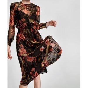 Zara Floral Velvet Burnout Long Sleeve Dress